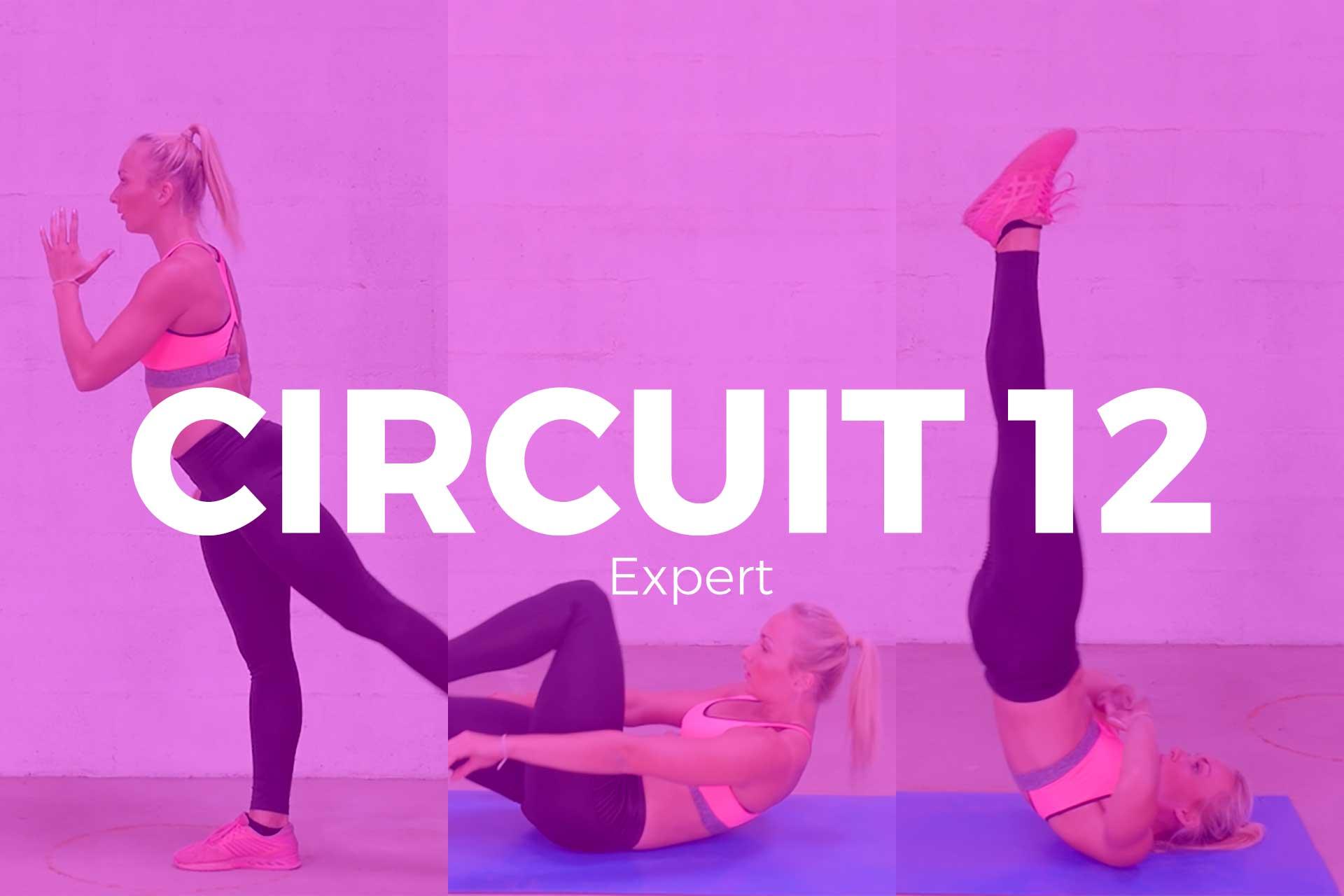 circuit 12