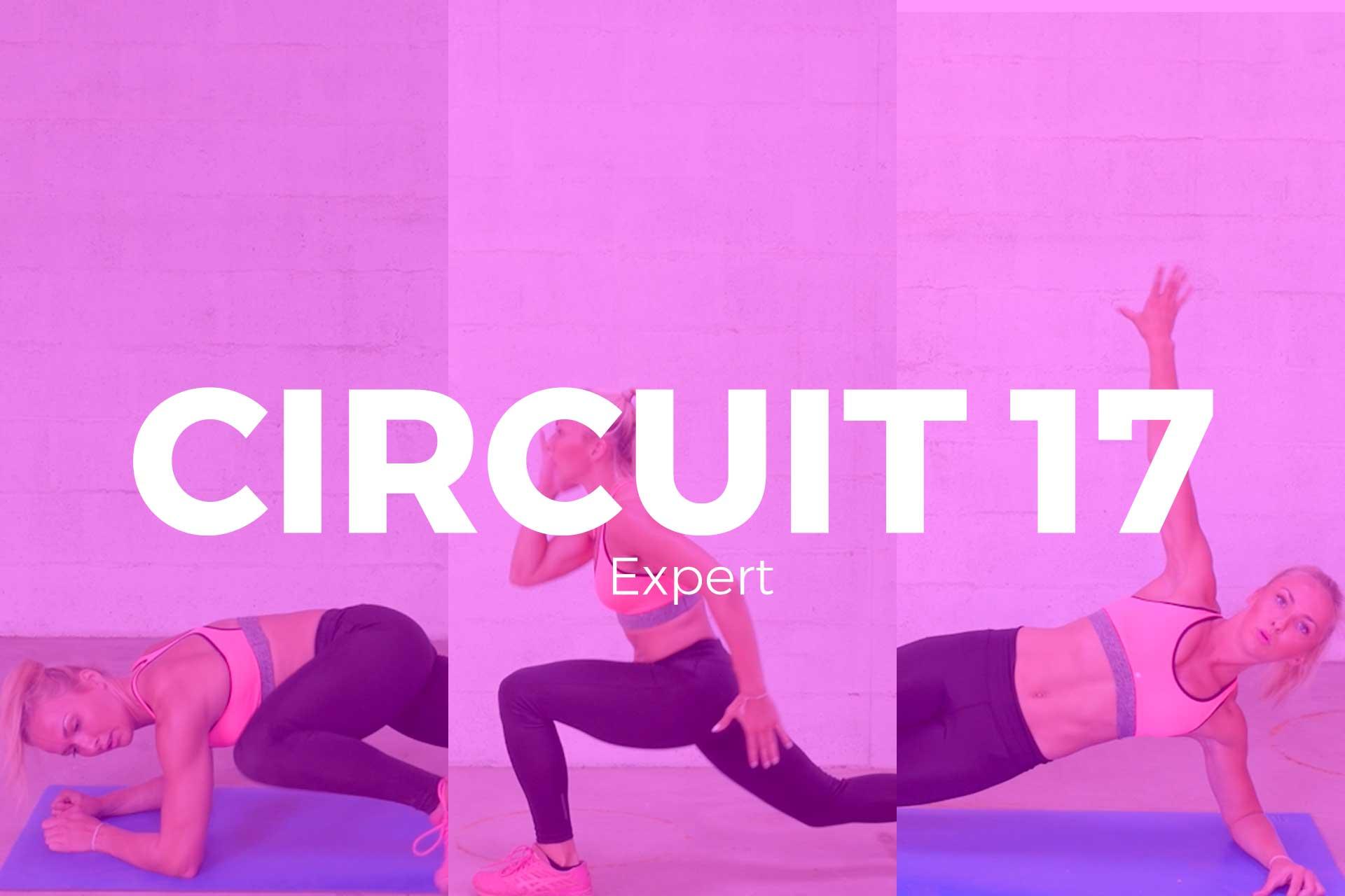 circuit-17