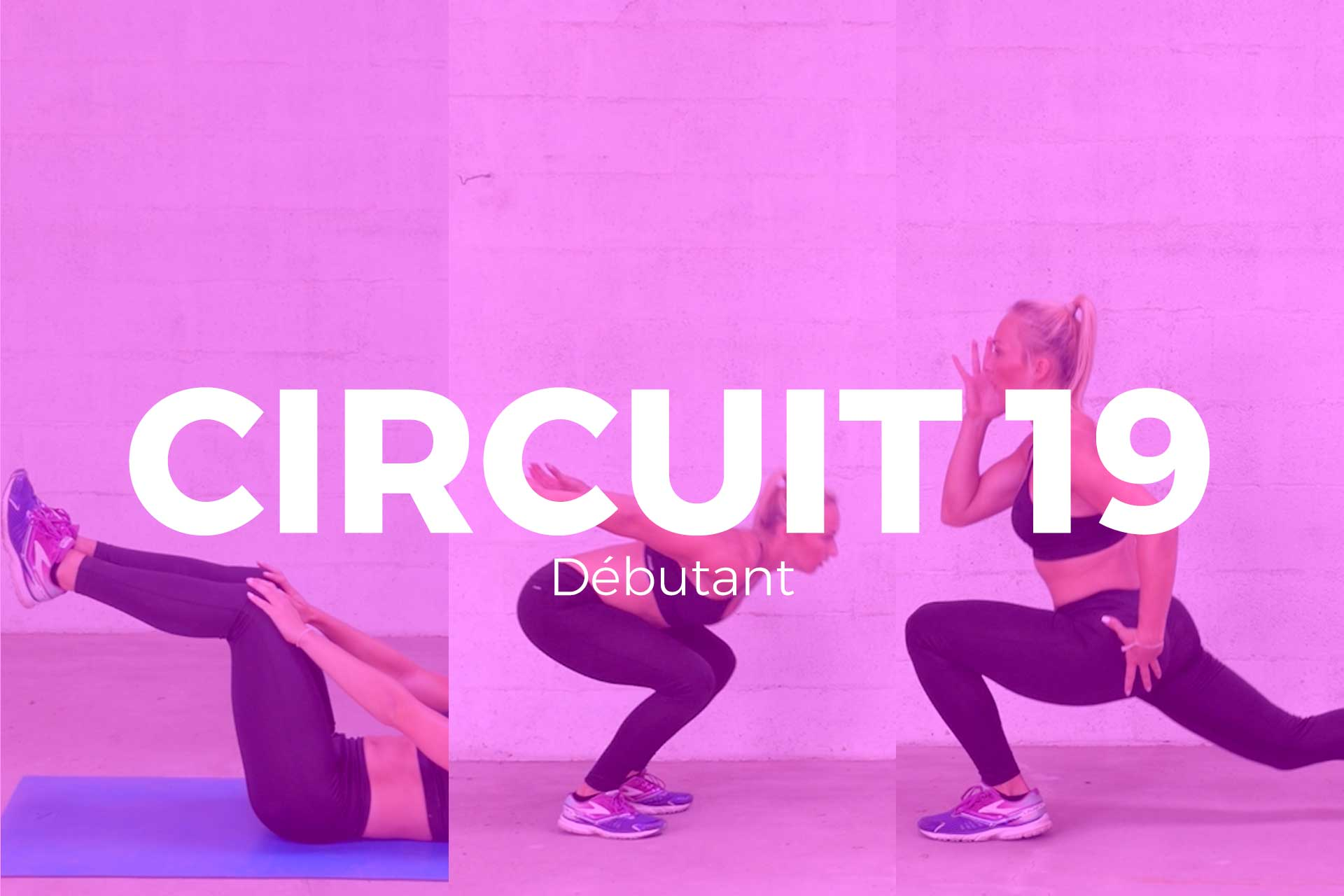 circuit 19