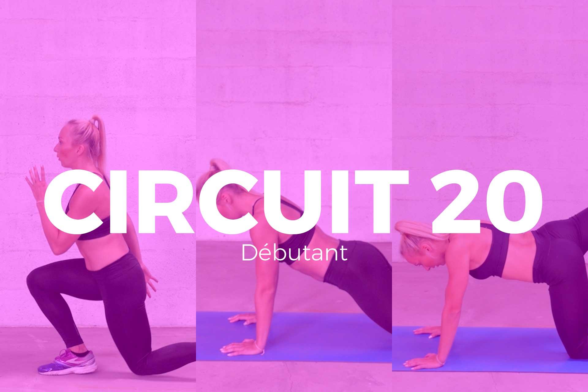 circuit 20