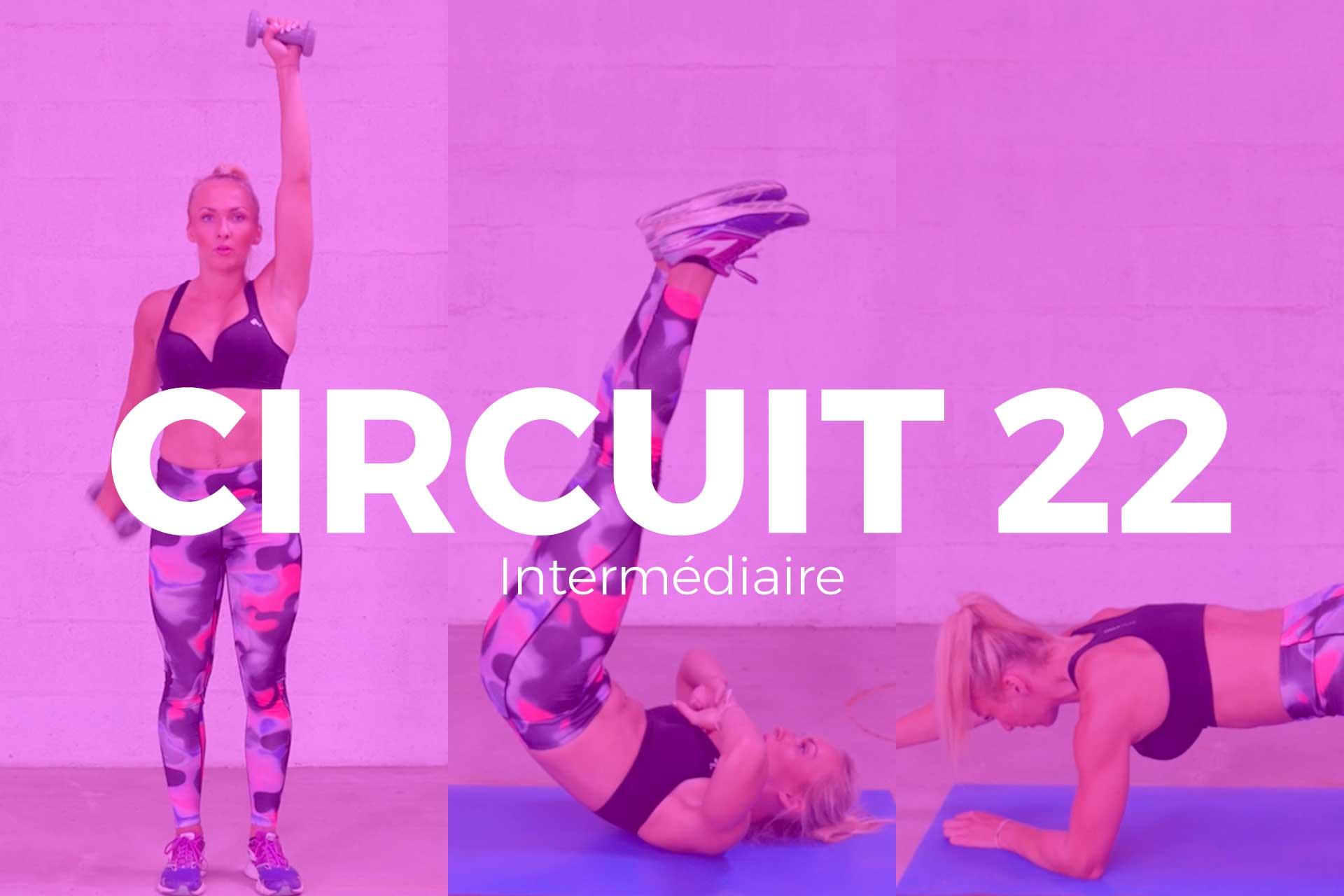 circuit 22