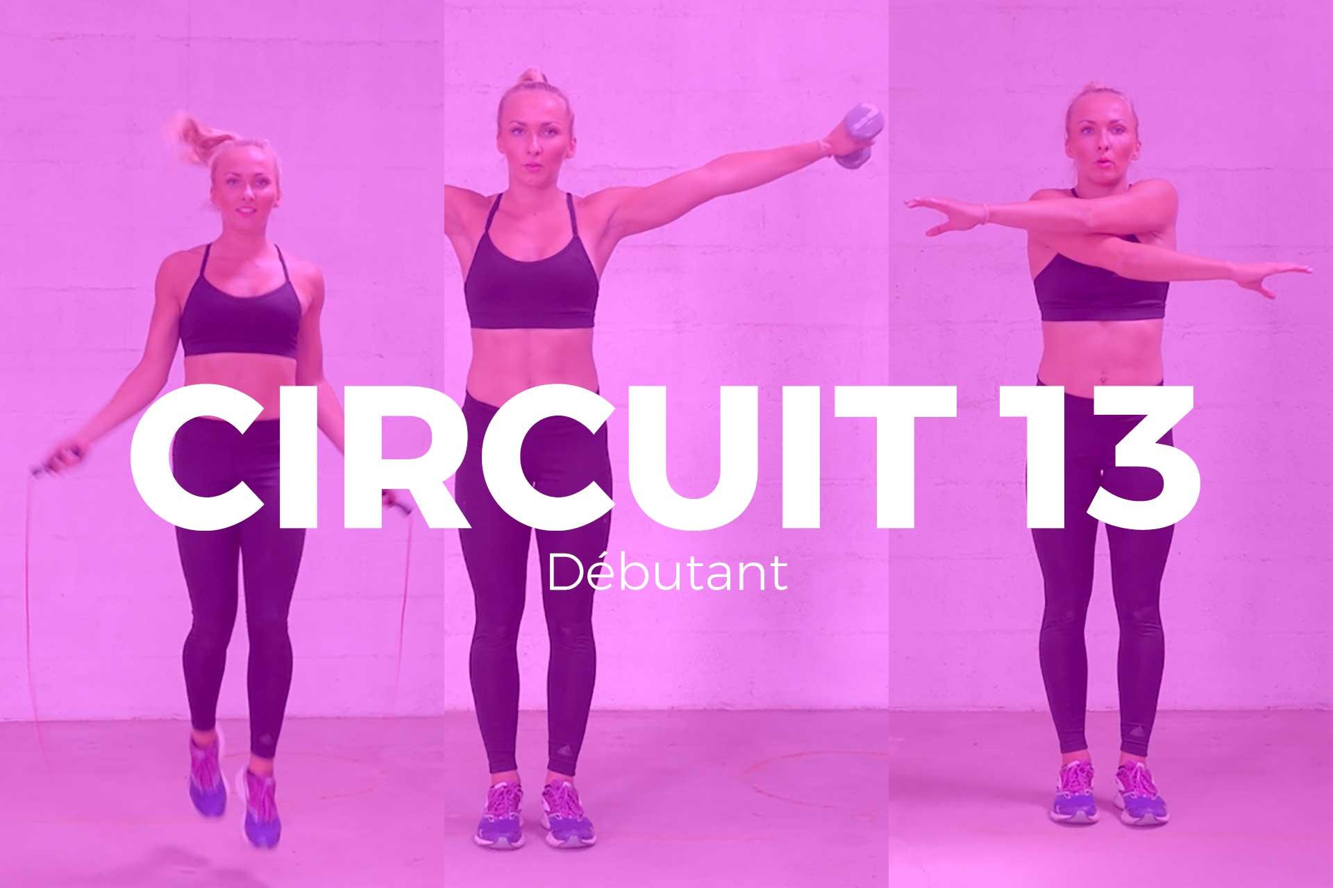 circuit 13