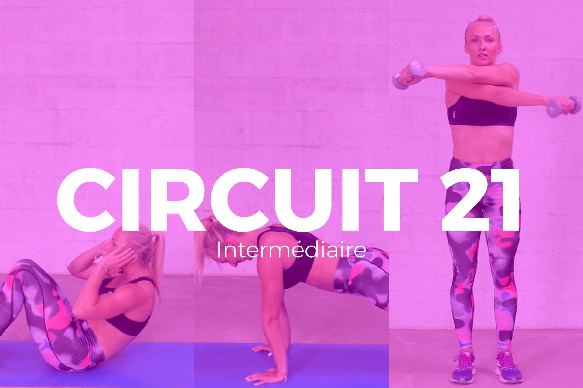 circuit 21
