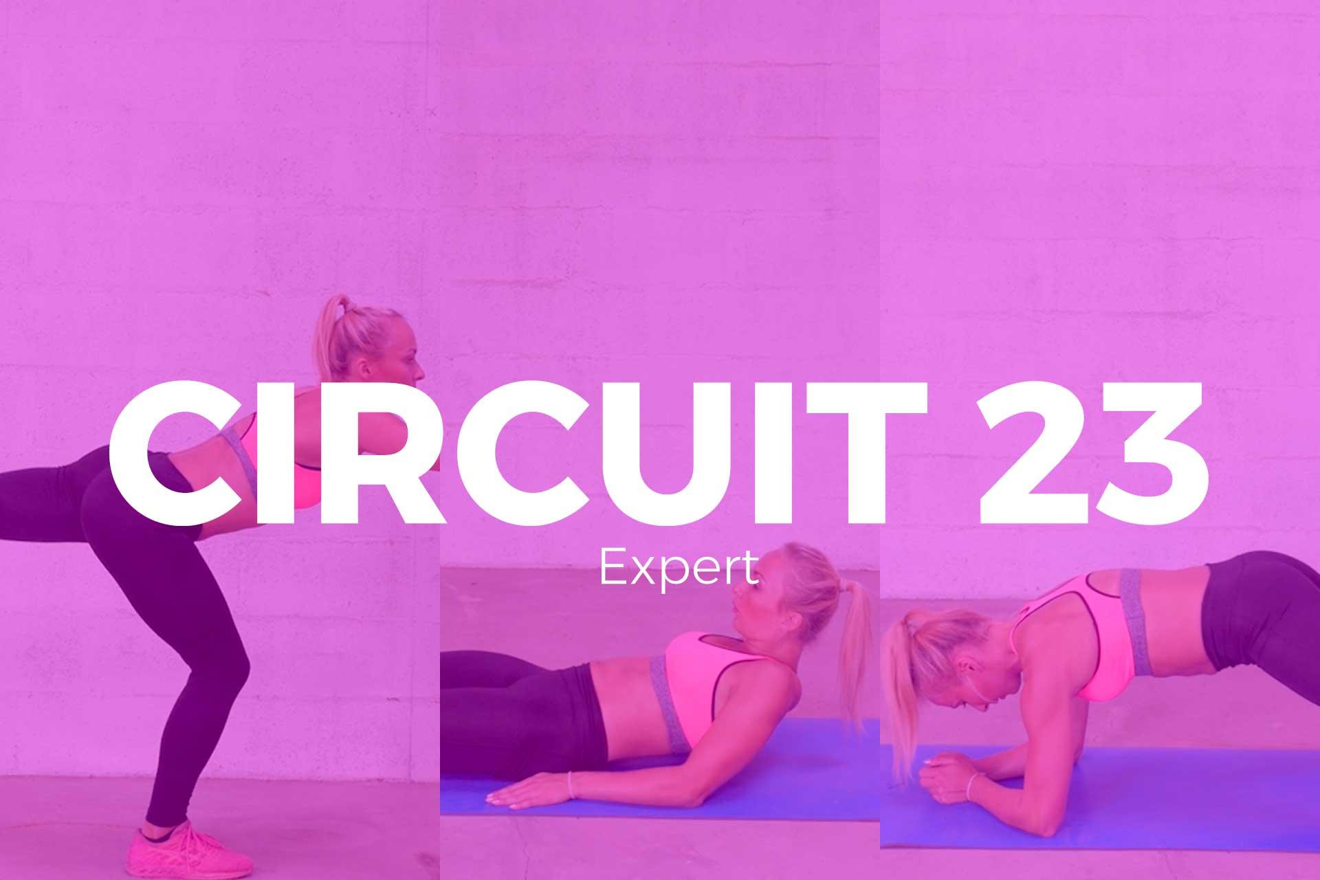 circuit-23