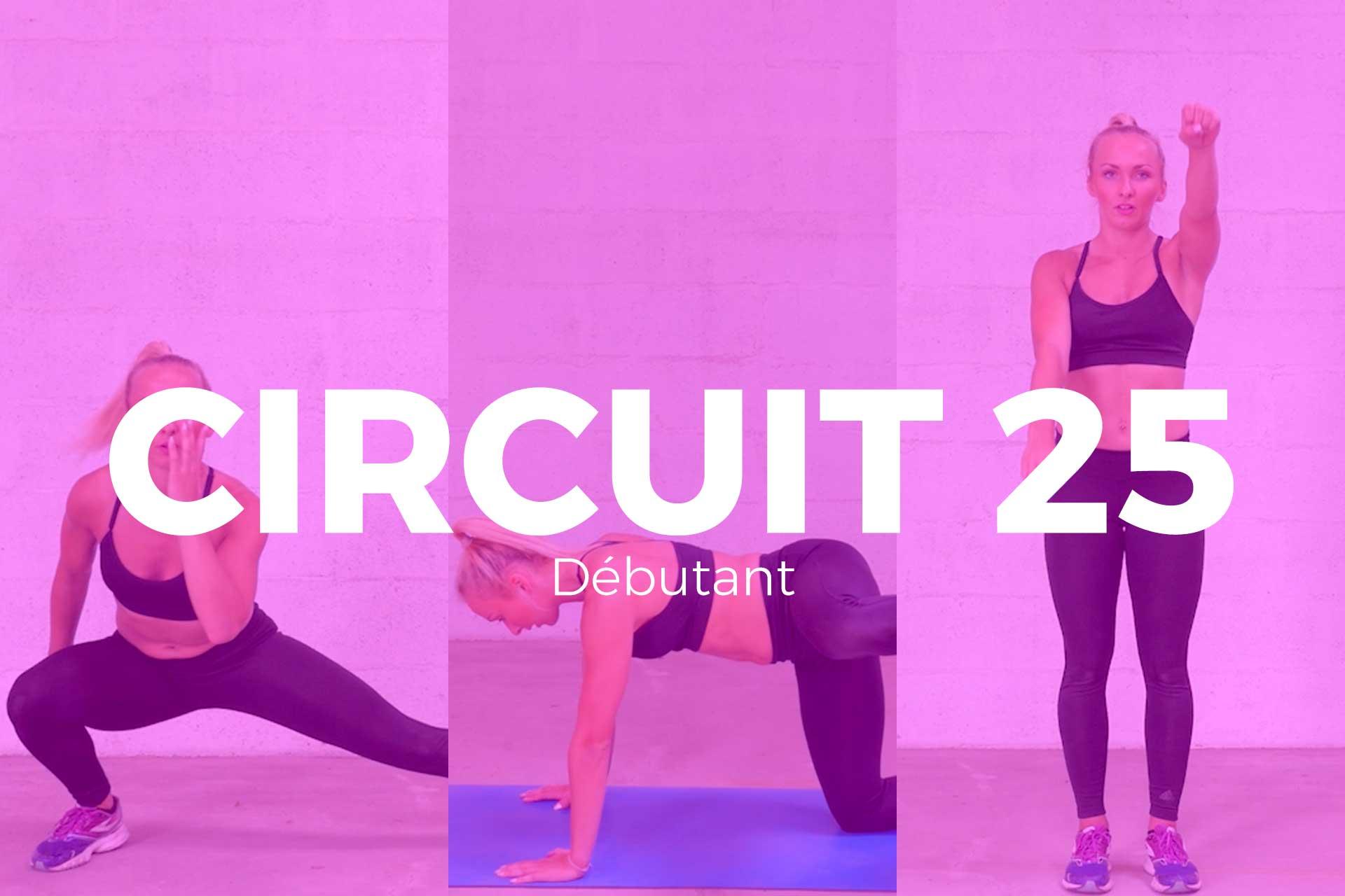 circuit-25
